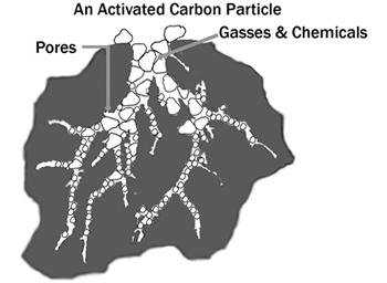 Carbon activado particula